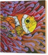 Clownfish I  Wood Print