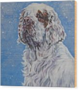 Clumber Spaniel In Snow Wood Print