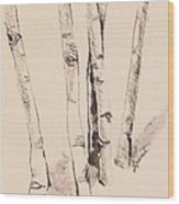 Clump Of Birch In Winter Wood Print