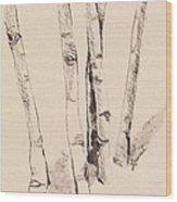 Clump Of Birch In Winter Wood Print