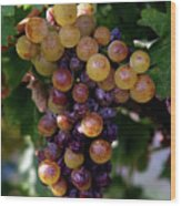 Cluster Of Ripe Grapes Wood Print