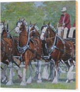 Clydesdale Hitch Wood Print by Anda Kett