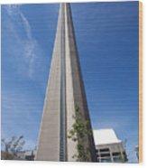 Cn Tower Toronto Ontario Wood Print
