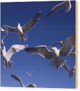 Cnrg0302 Wood Print