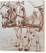 Coach Horses Wood Print