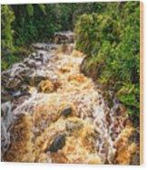 Coal Creek Rapids Wood Print