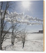 Coal Fired Power Plant In Winter Wood Print