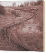 Coal Line S Wood Print by Jame Hayes
