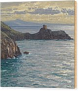 Coast At Amalfi Wood Print