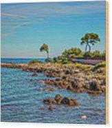Coast At Antibes France Dsc02221 Wood Print