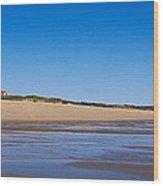 Coast Guard Beach Cape Cod National Wood Print