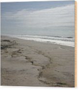Coast Line Long Island Wood Print