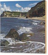 Coast Line Wood Print