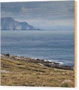 Coast Of Achill Island Wood Print