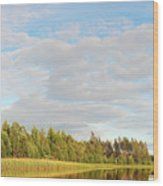 Coast Of Summer Lake Shined With Sun Beams Wood Print