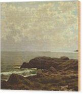 Coast Off Grand Manan Wood Print