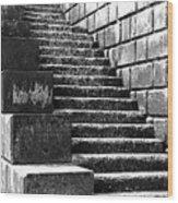 Coast - Sea Stairs Wood Print