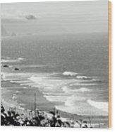 Coastal Bandw Wood Print
