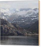Coastal Beauty Of Alaska 1 Wood Print