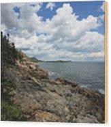 Coastal Wood Print