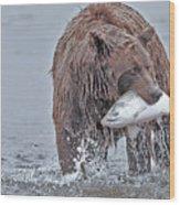 Coastal Brown Bear With Salmon  Wood Print
