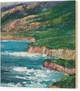 Coastal Coves Wood Print