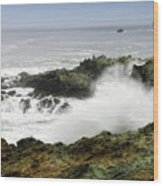 Coastal Expressions Wood Print