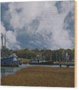 Coastal Island Town Wood Print