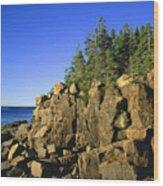 Coastal Maine Wood Print by John Greim