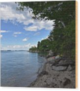 Coastal Maine's Rocky Shore On A Beautiful Summer Day Wood Print