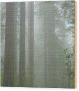 Coastal Mist Wood Print