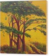 Coastal Morning Wood Print