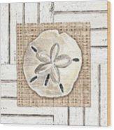 Coastal Shells 1 Wood Print