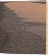 Coastal Strand At Dawn On Hunting Island Wood Print