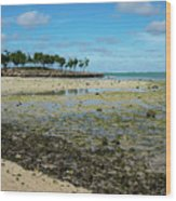 Coastal Textures Wood Print