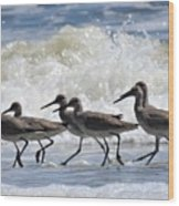 Coastal Togetherness Wood Print