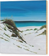 Coastal Treasure Wood Print