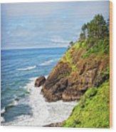 Coastal View From North Head Wood Print