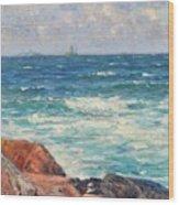 Coastal View Wood Print