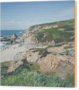 Coastal Views At Bodega Bay Wood Print