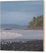 Coastal Zone Wood Print