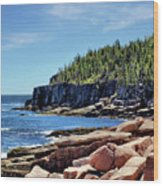 Coastline And Otter Cliff 3 Wood Print