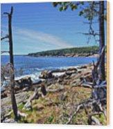 Coastline At Otter Point 1 Wood Print