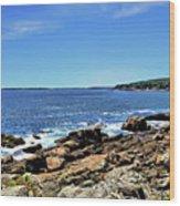Coastline At Otter Point 5 Wood Print