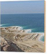 Coastline In The Desert Wood Print
