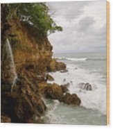 Coastline Waterfall Wood Print