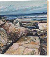 Coast's Edge Wood Print by Richard Knox