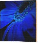 Cobalt Blues Wood Print