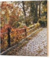 Cobbestone Climb Wood Print