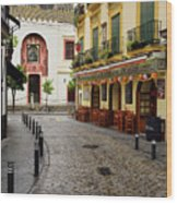 Cobblestone Argote De Molina Street With Cafe Ending At The Nort Wood Print